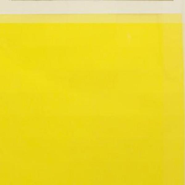 Eva Tek Renkli 50x70 10lu Pk. Sarı